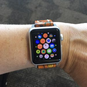 Applewatch_the